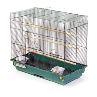 Prevue Pet Products Green and Black Flight Cage