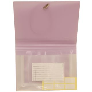 Hudson Envelope Light Purple Coupon size Expanding Files