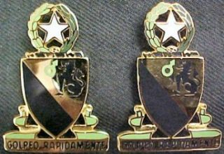 124th Cavalry Texas Distinctive Unit Insignia   Pair