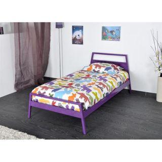 violet   Dimensions  107 x 189 x 80 cm   Garantie  1 an   Livré