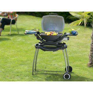 120   2.6 kw   Achat / Vente BARBECUE   PLANCHA Barbecue gaz Q 120