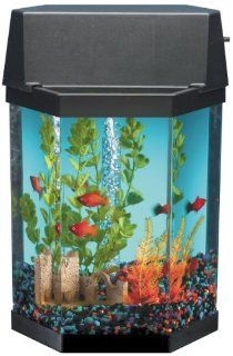 Hawkeye 6.3 Liter Aquarium Kit AQT 202 PL Pet Supplies
