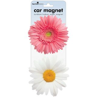 Daisy Car Magnets (Pack of 2)