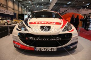Peugeot 207 Super 2000 Rally Racing Car  Foto stock © Philip Lange