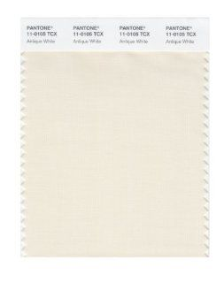 PANTONE SMART 11 0105X Color Swatch Card, Antique White