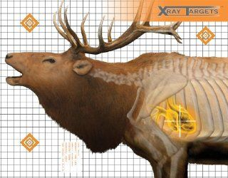 Champion Elk 36x30 Inch Xray Paper Target (Pack of 6